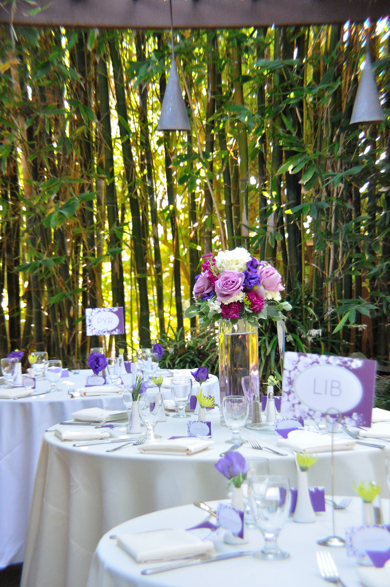 Wedding ideas on a budget romantic decoration for Outdoor wedding decorations on a budget