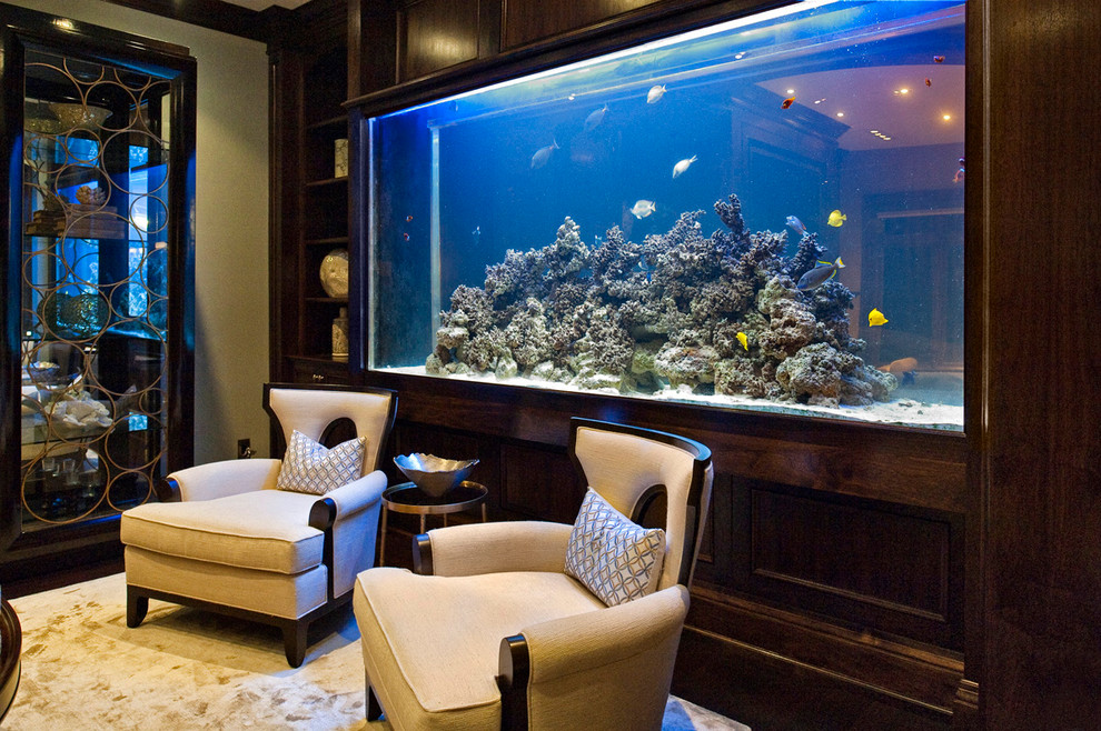 Living Room Fish Tank Four Seasons Residential Shark Tank Modern