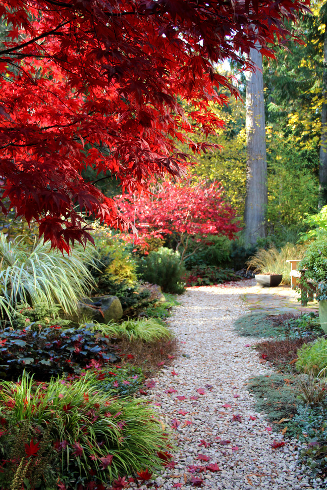 fall garden trees shrubs how to landscape easy contemporary-landscape