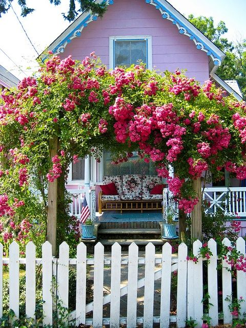 pink roses arch garden white picket fence