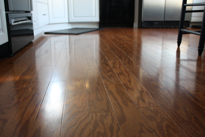 Vinegar Water Mop Hardwood Floor