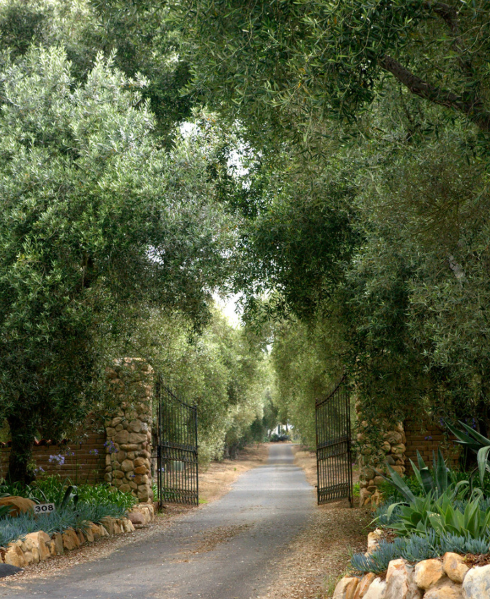 gate-entrance-magical-country