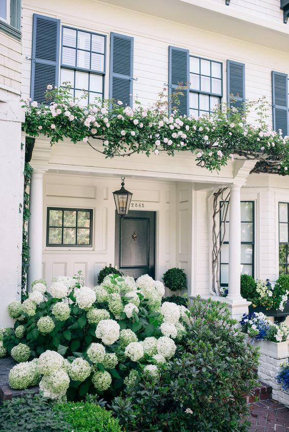 pretty-small-white-house-hydrangea-pergola-white-columns-decorating-magical-ideas