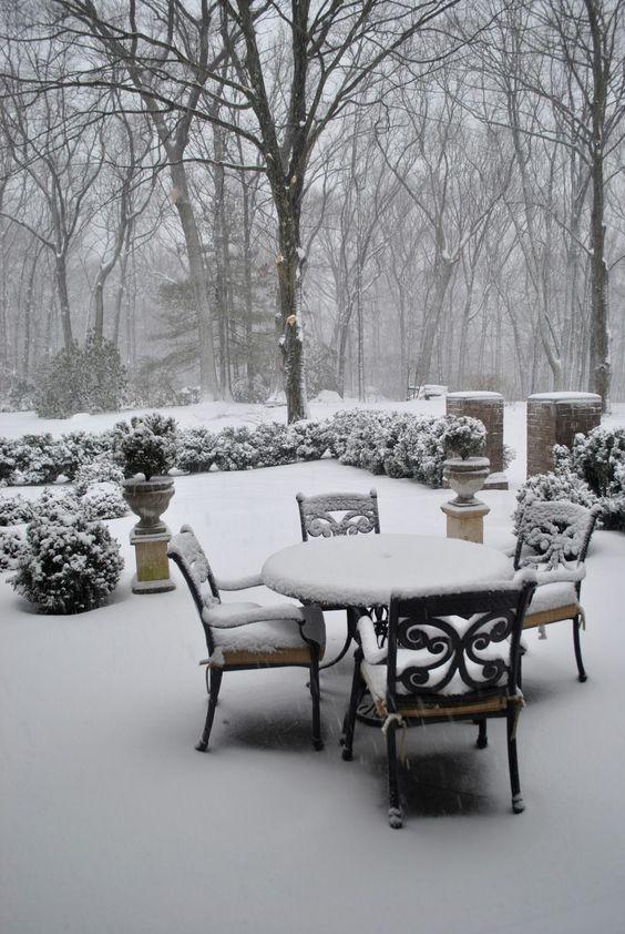 winter-porch-gardening-ideas