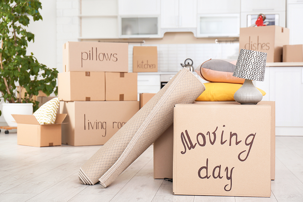 Get Involved in Choosing the Best Movers in Singapore for Quick House Moving Service